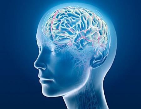 Когнитивни умения 3 същност и значение