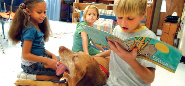 boy-reading-to-a-dog
